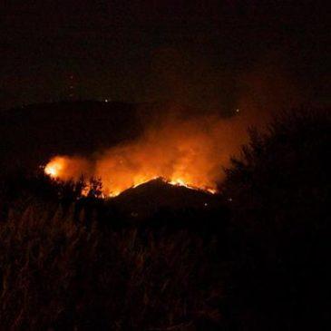 Gaeta Incedi boschivi: La Protezione Civile fa un ottimo lavoro