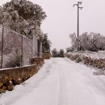 Località Vignole: neve nelle strade, affascinante spettacolo