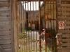 castello_angioino_gaeta_carcere_militare_visita_guidata_31