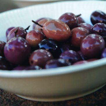 Gaeta, sul GamberoRosso parlano di: Olio e olive di Gaeta: 2ª edizione di Il Montano Reale