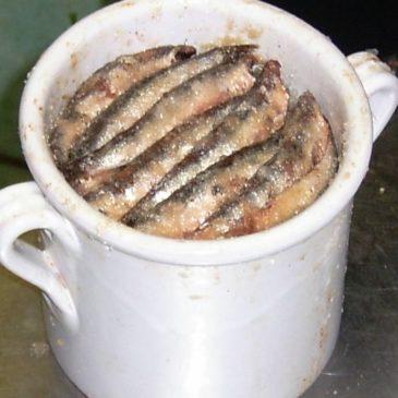 *Ricetta* Prodotti tipici di Gaeta: Alici sotto sale