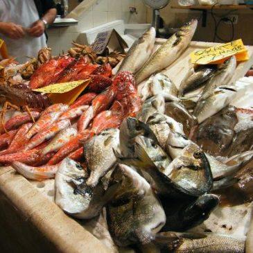 Gaeta: Il Mercato del Pesce si sposta