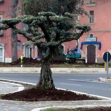 Gaeta: presentato il Piano Urbano del Traffico alla Città