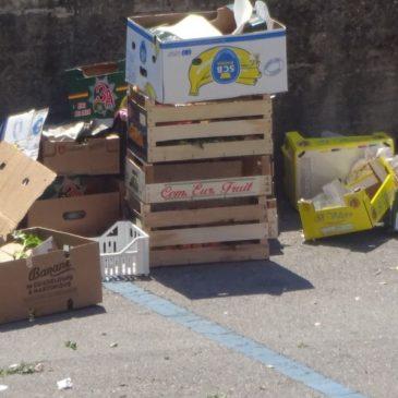 Raccolta differenziata a Gaeta: a novembre sfiora il 60%