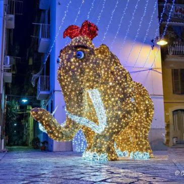 La Video Guida delle Luminarie di Gaeta: Seguila e scarica il programma degli eventi