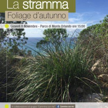 """La lavorazione della """"Stramma"""": Passeggiata naturalistica a Monte Orlando"""