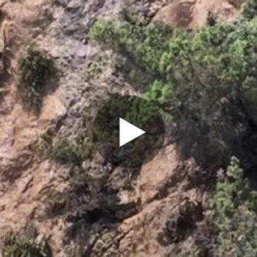 Video: Smottamento della roccia sulla spiaggia dei 40 Remi a Gaeta.