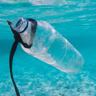 Gaeta sarà #PLASTICFREE Vietata la plastica dal 1 Febbraio 2020